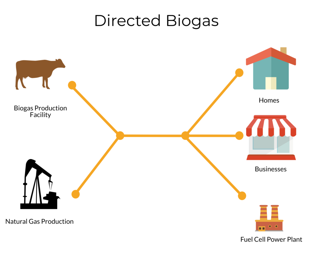 Directed Biogas Infographic
