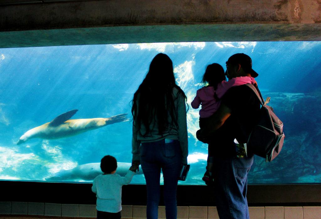Family at Aquarium of the Pacific